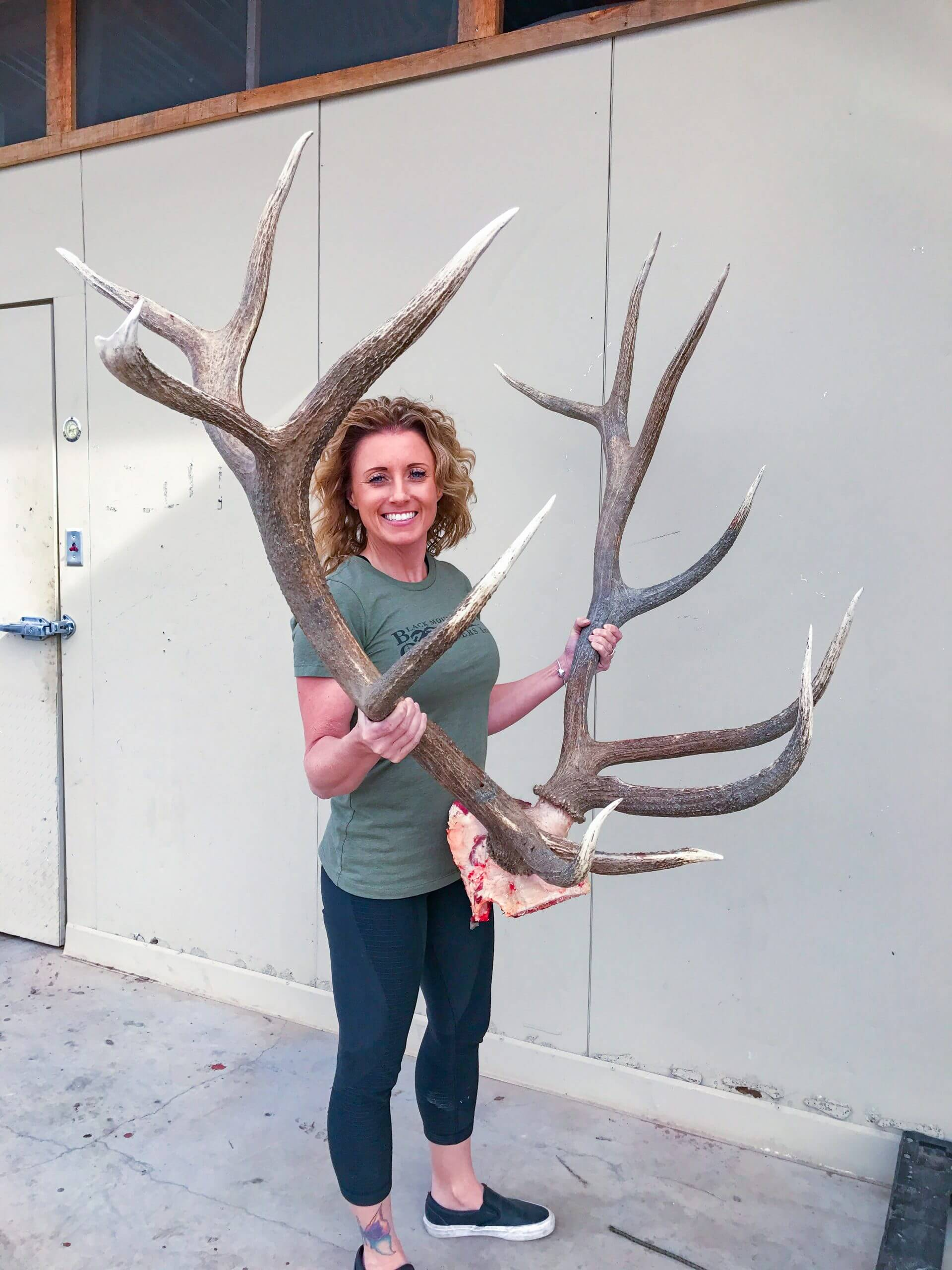 new mexico hunt archery bull elk