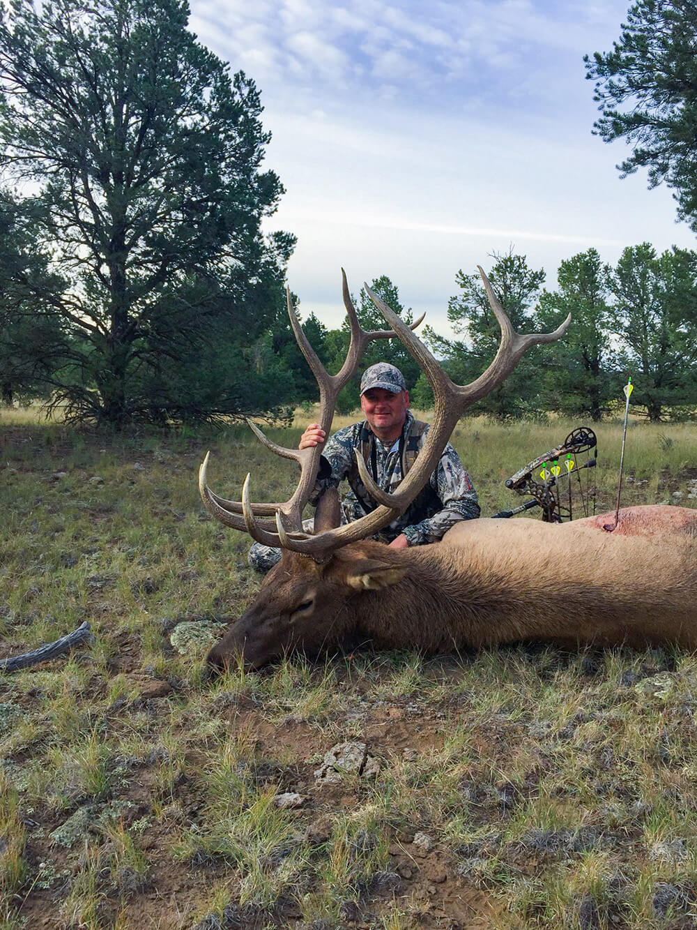 archery hunting bull elk new mexico