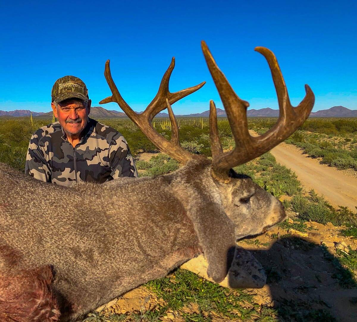 coues deer new mexico