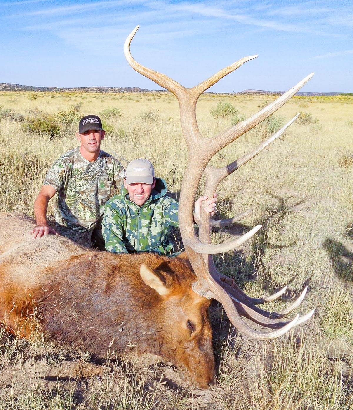 new mexico elk hunting outfitters