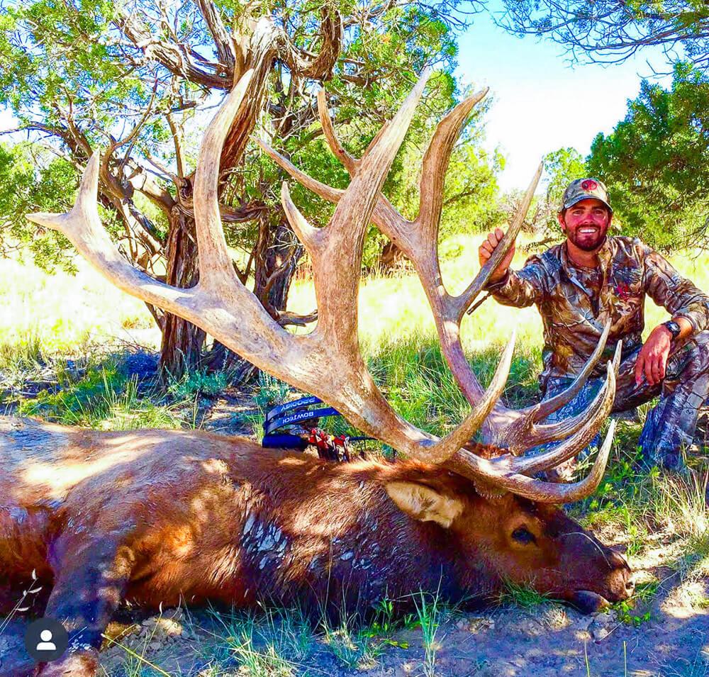 new mexico archery bull elk hunting