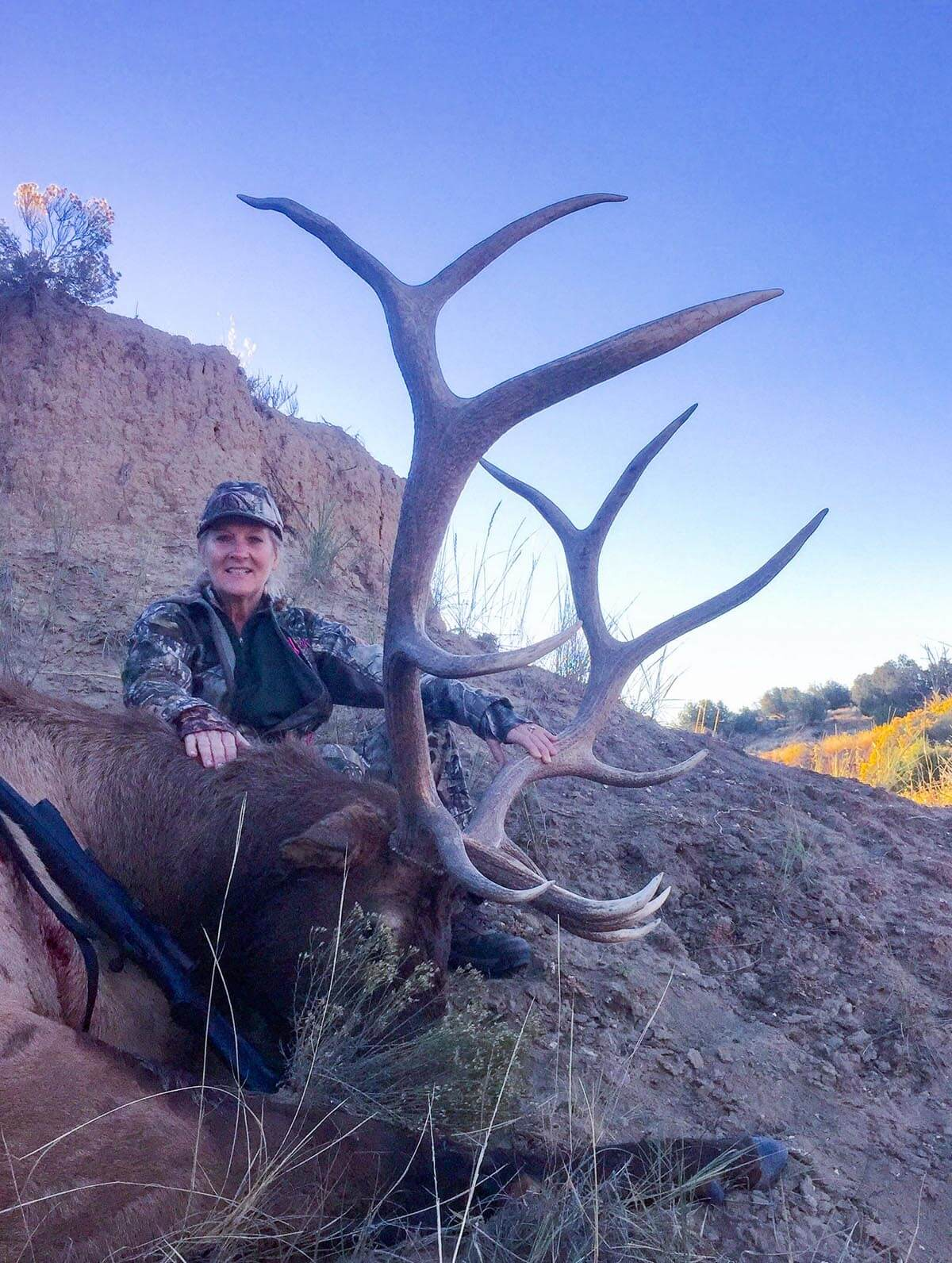 new mexico elk outfitters
