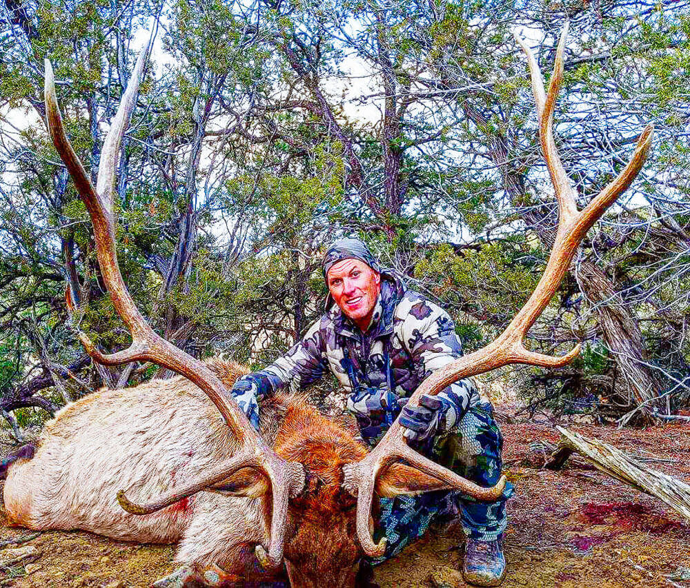 new mexico archery elk guide
