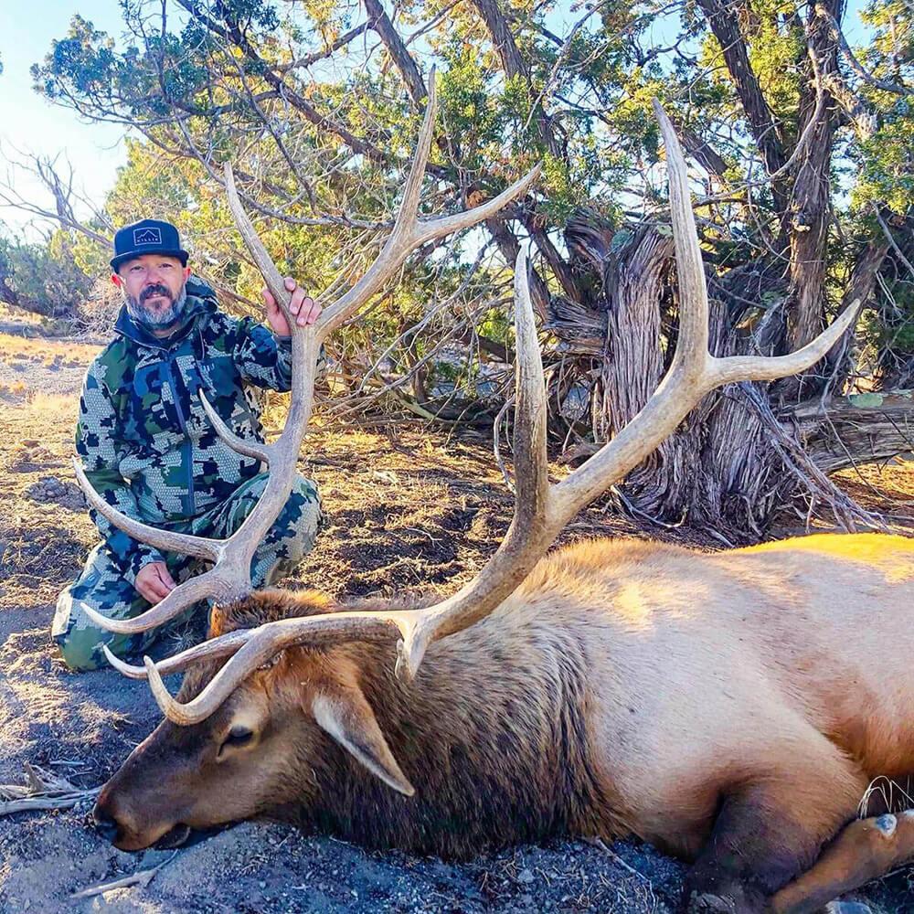 new mexico elk season