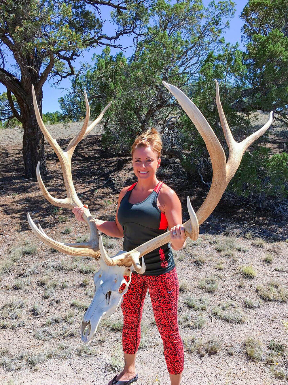 elk in mexico hunt