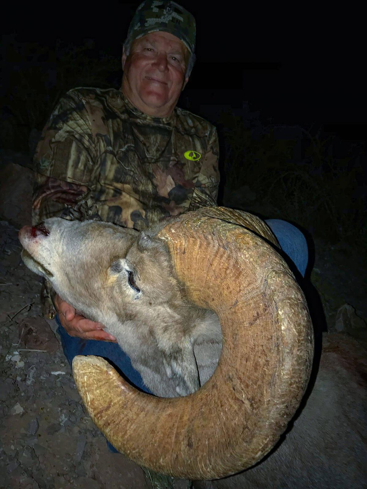 desert sheep hunt