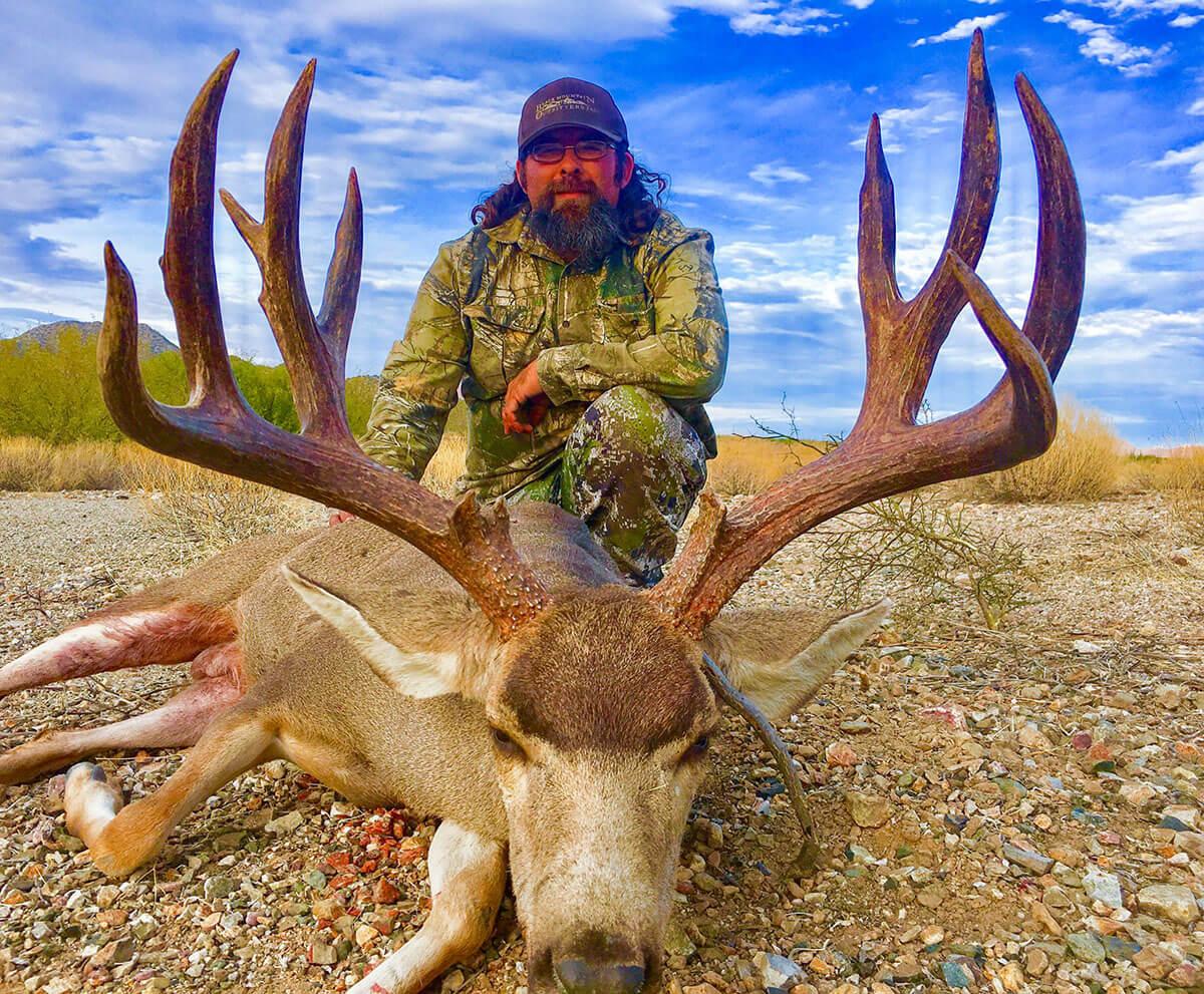 mule deer in desert hunt