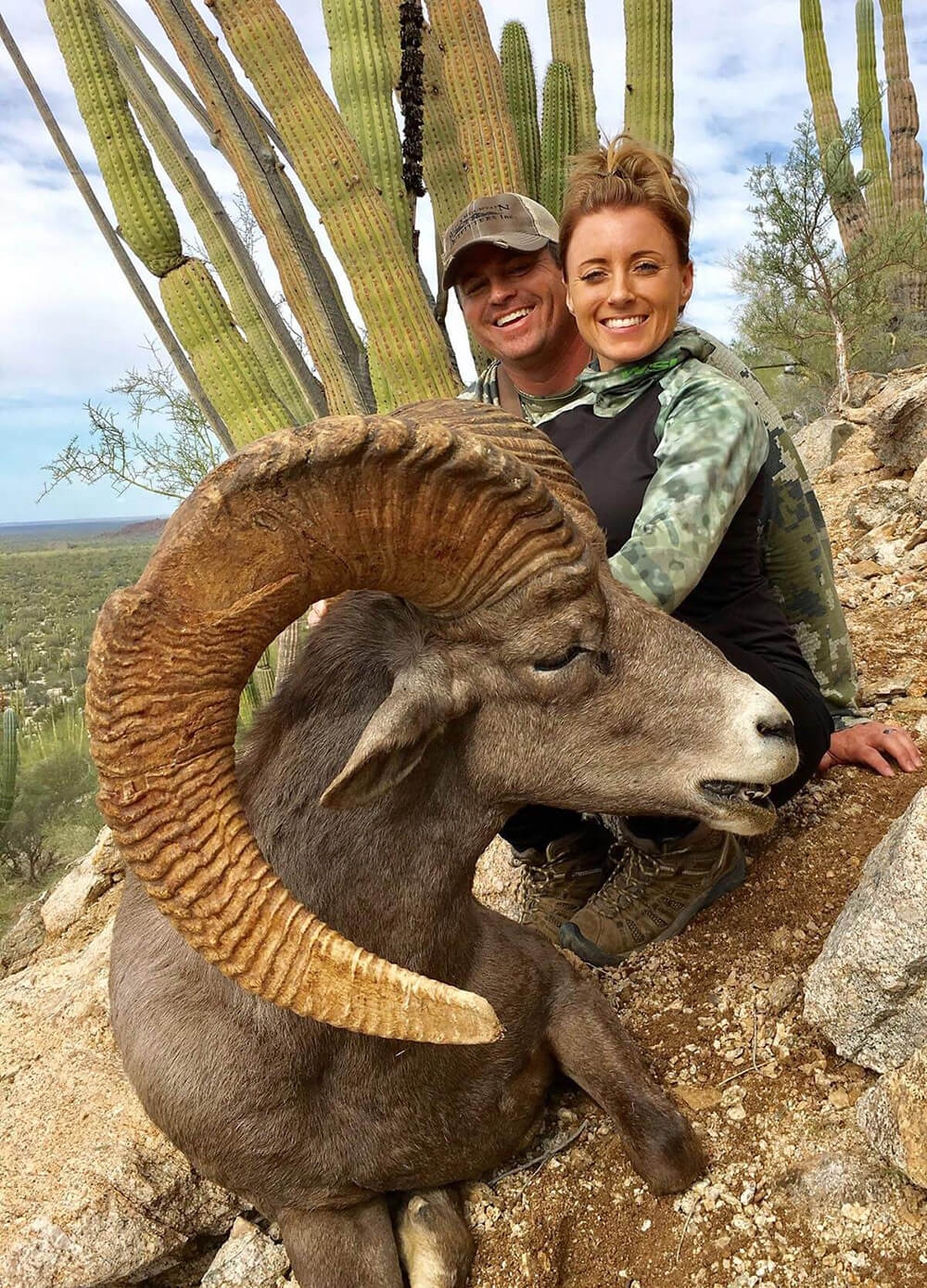 bighorn sheep hunting outfitters