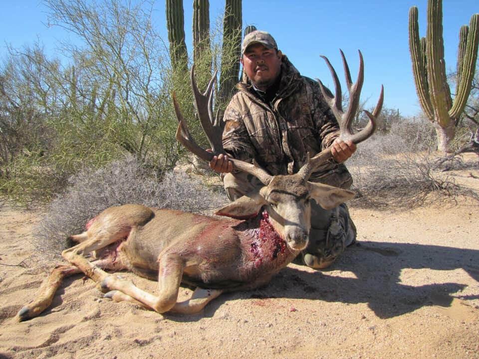 mule deer hunting mexico