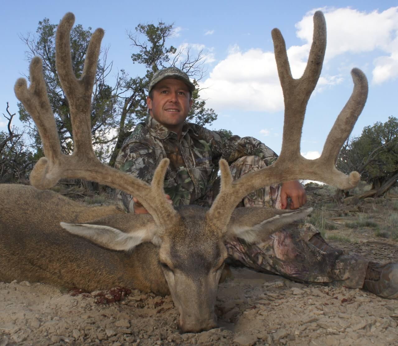 New Mexico Mule Deer Hunts