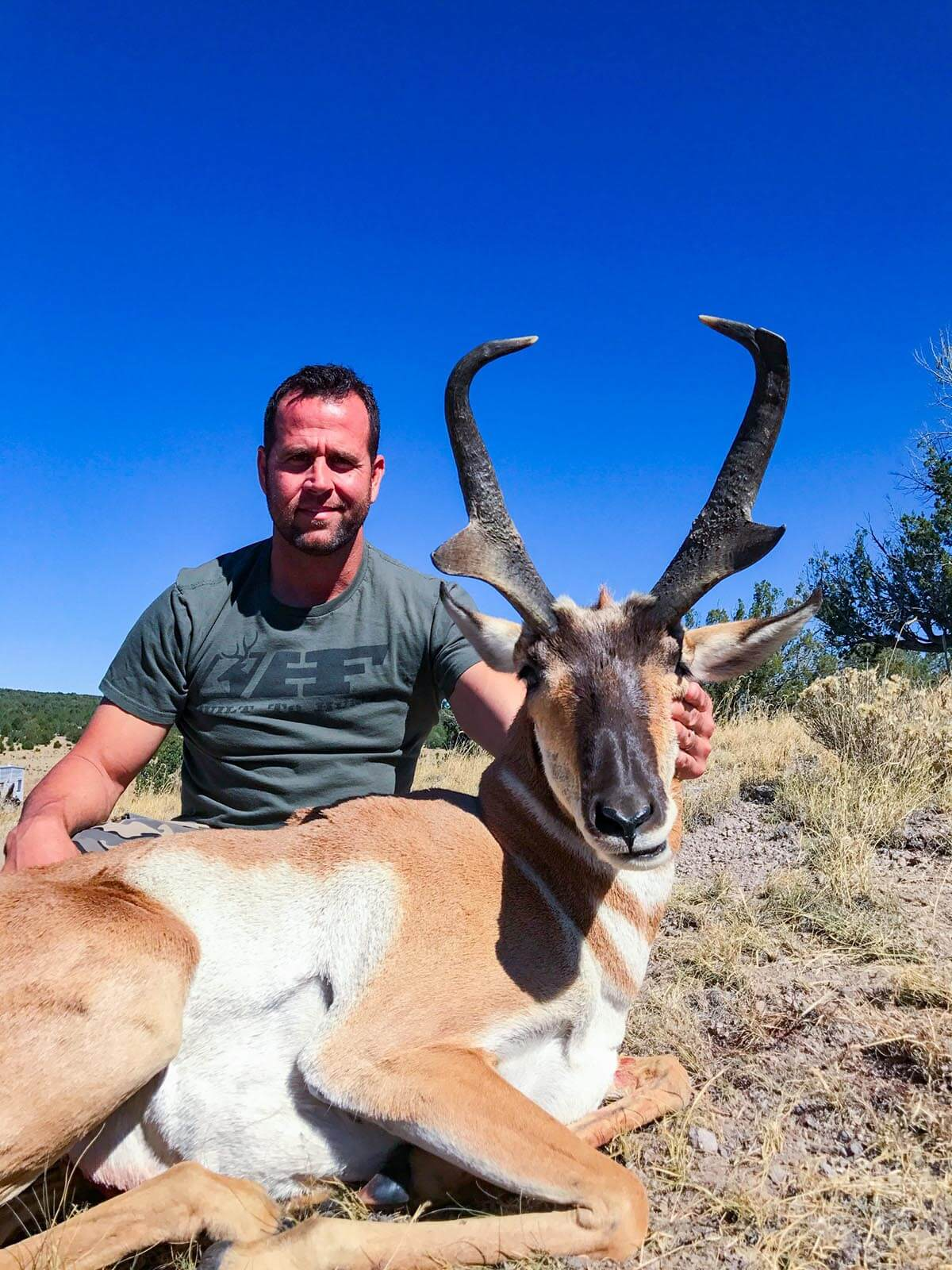 New Mexico rifle pronghorn hunting book now gallery 7