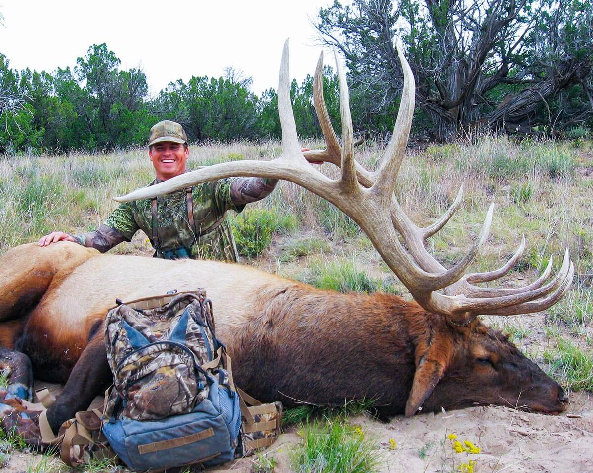 unit 17 new mexico elk outfitters